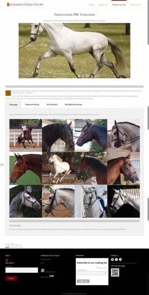 by Servicios Web Media-Spain