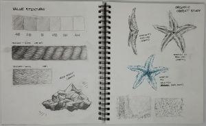 Texture study by My Portfolio