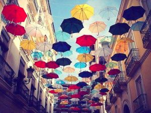 PARAPLUIES by Pascal Wiroth